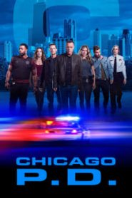 Chicago P.D. Todas as Temporadas Online – Série HD 720p 1080p Dublado