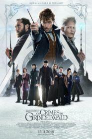 Animais Fantásticos: Os Crimes de Grindelwald – Assistir HD 720p Dublado Online