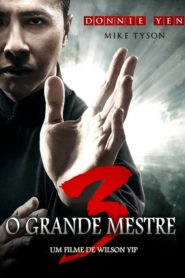 O Grande Mestre 3 Online – Assistir HD 720p Dublado