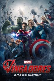 Vingadores : Era de Ultron Online – Assistir HD 720p Dublado