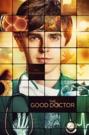 The Good Doctor ( O Bom Doutor ) Dublado e Legendado – Online Assistir 1ª e 2ª Temporada HD 720p