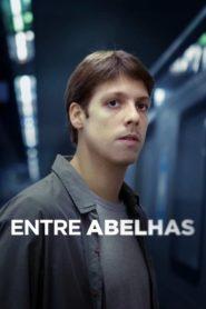 Entre Abelhas Online – Assistir HD 720p Dublado Filme Nacional