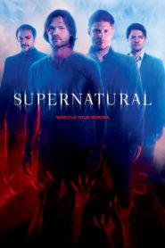 Supernatural 1ª a 14ª Todas Temporadas – Assistir Série HD 720p Dublado