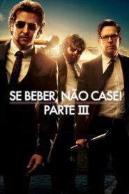 Se Beber, Não Case! – Parte III ( 2013 ) Dublado – Assistir HD 720p Online