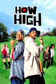 Dois Doidões em Harvard ( 2001 ) Online – Assistir HD 720p Dublado