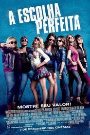 A Escolha Perfeita ( 2012 ) Dublado Online – Assistir HD 720p