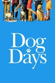 Nossa Vida com Cães ( 2018 ) Dublado Online – Assistir HD 720p