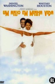 Um Anjo Em Minha Vida ( 1996 ) Dublado Online – Assistir HD 720p