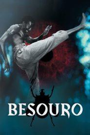 Besouro ( 2009 ) Dublado Online – Assistir HD 720p