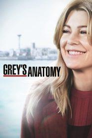 Grey's Anatomy ( Série Online ) HD 720p Assistir Dublado e Legendado Online
